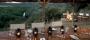 Hotel Shamwari Game Reserve - Bayethe
