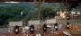 Hotel Shamwari Game Reserve - Lobengula