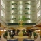 Hotel Embassy Suites Dallas - Market Center