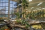 Hotel Embassy Suites Phoenix Biltmore