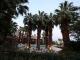 Hotel Ivy Palm Resort & Spa