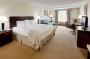 Hotel Holiday Inn Norwich