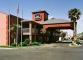 Hotel Best Western Oasis Of The Sun