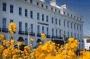 Hotel Claremont Lions
