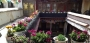 Hotel Lincang Premier  - Lhasa
