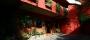 Hotel Eco Arbol De Fuego