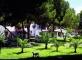 Hotel Insotel Club Mar Y Land